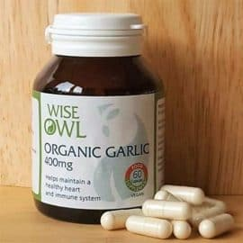 Food State Garlic Supplement