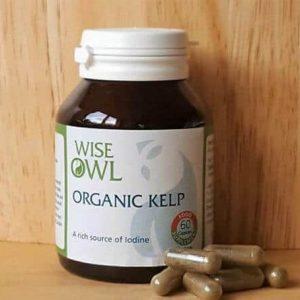 Food State Organic Kelp