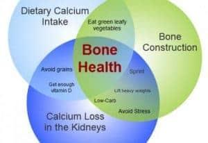 calcium bones