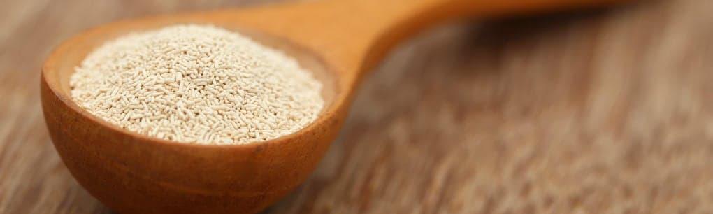 yeast on spoon